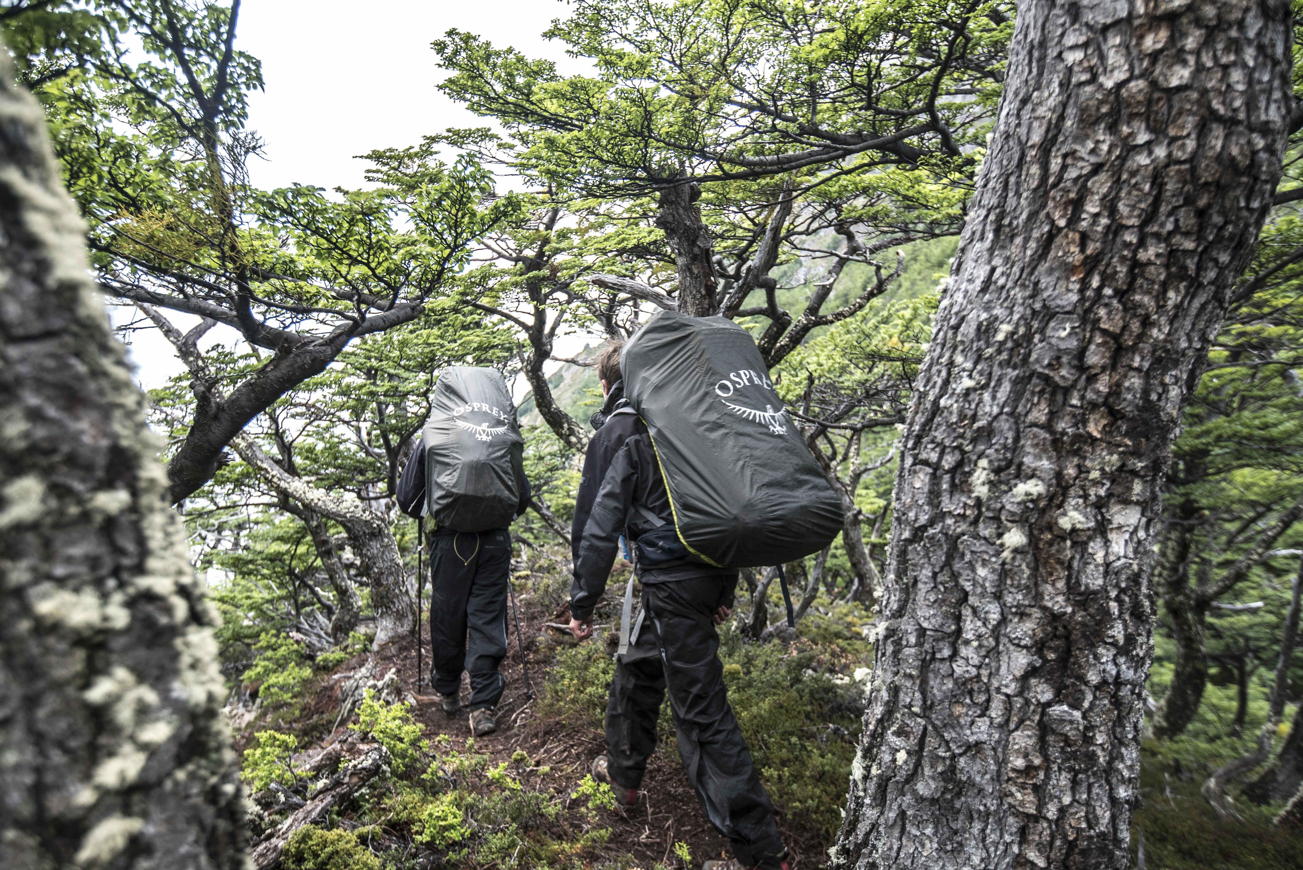 602e12c88cd How to Choose Hiking Footwear