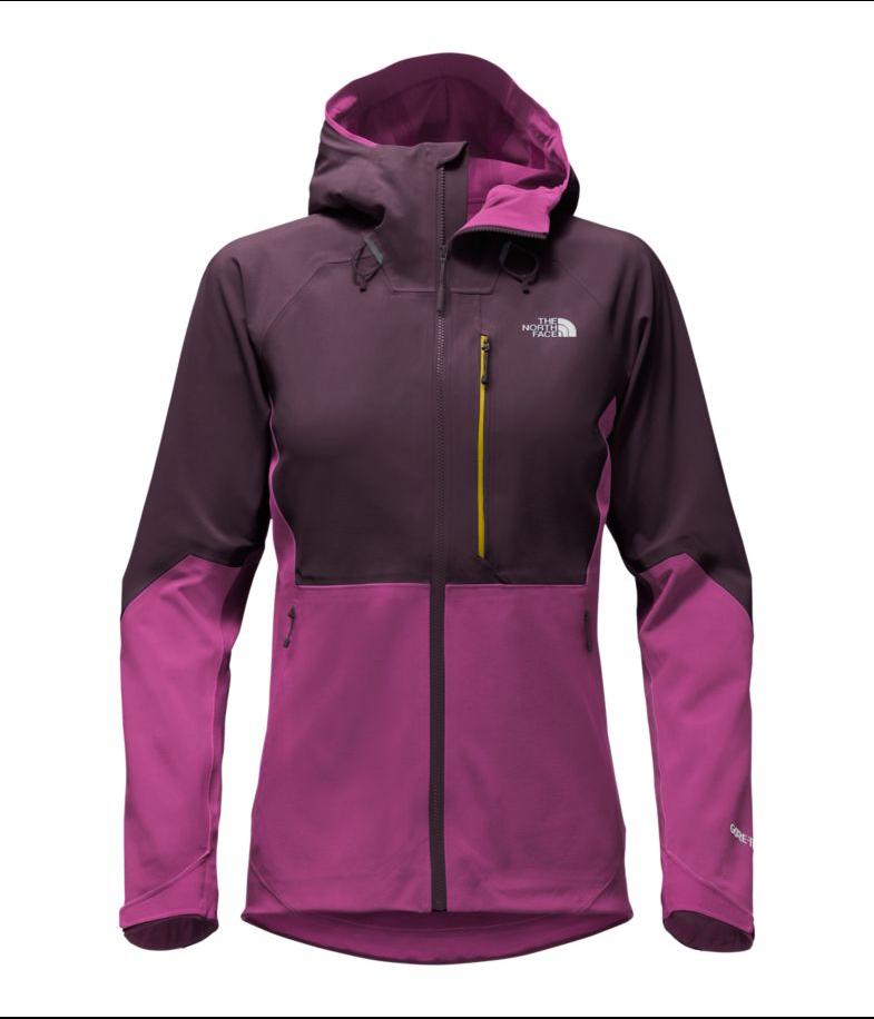 fbb4d53f8 The North Face - Women's Apex Flex GTX 2.0 Jacket