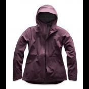 The North Face - Apex Flex GTX 3.0 Jacket Women's